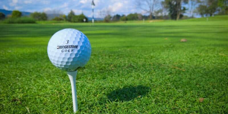Golf Jaarvergadering